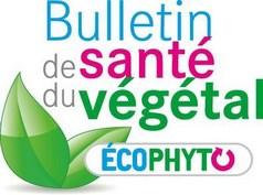 logo_bulletin_sante_vegetal