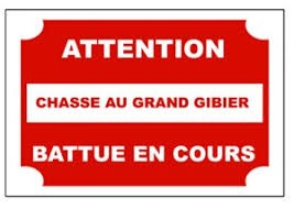 chasse_en_cours