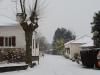 neige0002